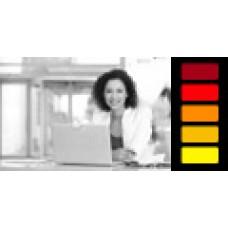 Индивидуальное занятие с руководителем онлайн центра. 2 академ. часа